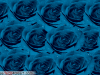 Background Of Blue Color Roses