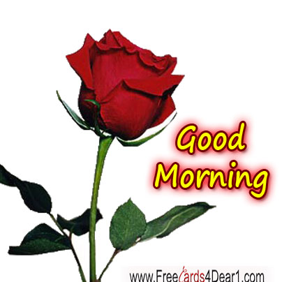 good-morning-with-rose