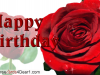 Happy Birthday Rose Greeting Card