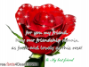 To My Best Friend Happy Friendship Day Card With Beautiful Rose
