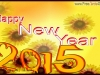 wishing-you-a-happy-new-year-2015
