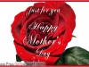 lovely-mothers-day-greeting-card