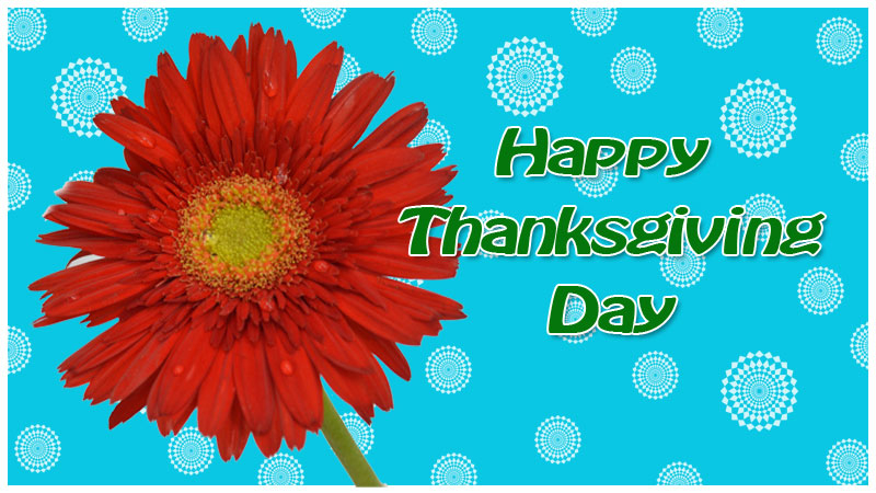 thanks-giving-day-greeting-card