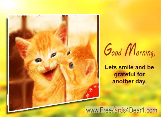 Good morning pictures images funny greeting greeting cards funny good morning greeting card m4hsunfo