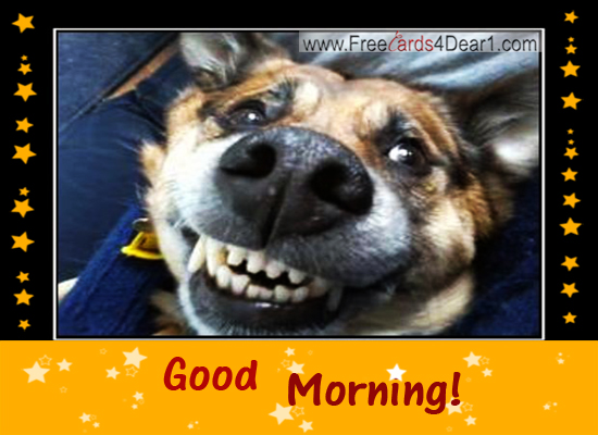 good-morning-dog-funny